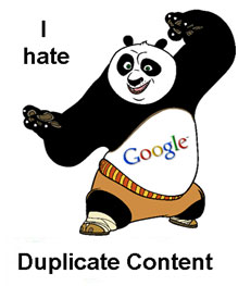 Image result for duplicate content